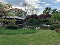Setagaya Park, pond and tea house, img 1.jpg