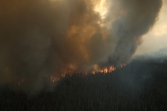 The Shanta Creek Fire began in a taiga area that had not had a major fire in over 130 years, and so was allowed to burn unchecked until it began to threaten populated areas. Shanta2 7-8-2009.jpg