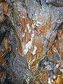 Shatterconed sandstone (Mississagi Formation, Paleoproterozoic, ~2.3-2.4 Ga; Ramsey Lake Road outcrop, Sudbury, Ontario, Canada) 116 (46979061094).jpg