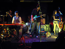 Shearwater (band).jpg