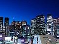 Shinjuku Skyline 2013.jpg