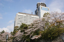 Shizuoka Prefectural Government Office 20090401.jpg