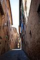 Sienna (5595605763).jpg