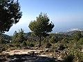 Sierra de Almijara (6976459077).jpg