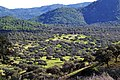 Sierra de Andújar (7).jpg