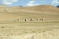 Silk Road 1992 (4367739756).jpg