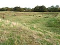 Site of Bolingbroke Castle and Rout Yard, Old Bolingbroke - geograph.org.uk - 1524395.jpg