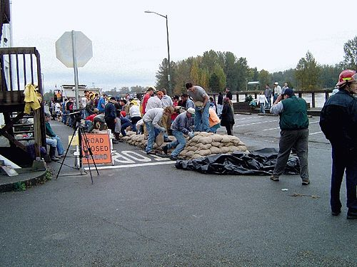 The Skagit River, which flows through Mount Vernon, is prone to flooding during periods of heavy rain in the Cascades. In October 2003 the townspeople of Mount Vernon turned out to build a sandbag dike along the river in anticipation of a flood. Skagit River sandbagging 2003.jpg