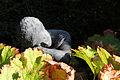 "Skulptur ""Die Schlafende"" - Friedhof Rosenberg Winterthur.jpg"