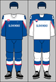 Slovakia national ice hockey team jerseys 2018 (WOG).png