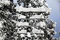 Snow on the Power Grid (14644557749).jpg
