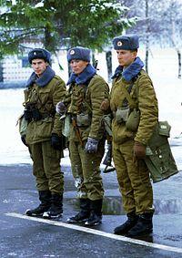В интернет-магазине военного снаряжения kapterka-nsk. Ru вы найдете все необходимое: от амуниции до обмундирования. Обращайтесь по телефону +7 (953) 793-5982.