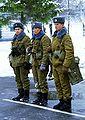 Soldiers of the Tamanskaya Division.JPEG