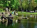 Sommer im Bad Mergentheimer Kurpark. 04.jpg