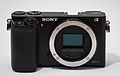 Sony Alpha ILCE-6000 APS-C-frame camera no body cap-Crop.jpeg