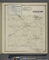 South Stockton (Village); South Stockton Business Directory; Stockton (Township) NYPL1583160.tiff