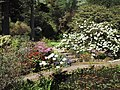 Spring in Arduaine Gardens - geograph.org.uk - 920627.jpg