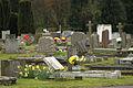 Spring in Epsom (6980184006).jpg