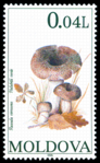 Stamp of Moldova 238 - 2.png