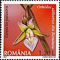 Stamps of Romania, 2007-019.jpg