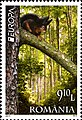 Stamps of Romania, 2011-35.jpg