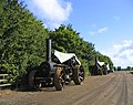 Steam Traction Engines - Barleylands Farm - geograph.org.uk - 59862.jpg