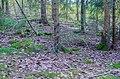 Stensättning Hedemora 323-2.jpg