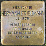 Stolperstein Hermann Friedmann Jena 2014.jpg