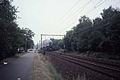 Stoomtrein Wildert 1986 in Kapellen.jpg