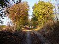 Strășeni District, Moldova - panoramio (9).jpg