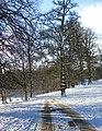 Studley Park - geograph.org.uk - 1626486.jpg