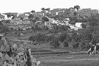 Suhmata 1946.jpg