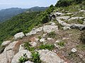 Suicide rock-2-mines-yercaud-salem-India.jpg