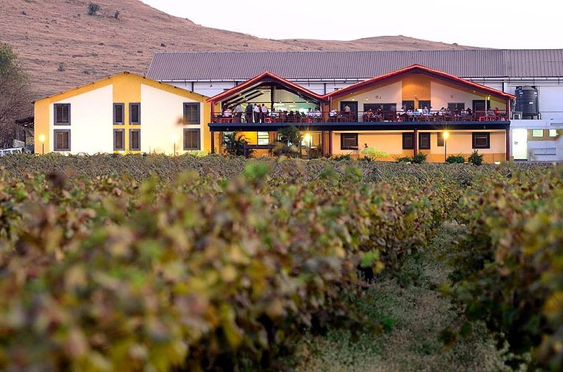 File:Sula Vineyards.jpg