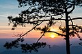 Sun rise at Nok Aen Cliff-1 ,Phu Kradueng National Park.jpg