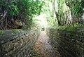 Sunken path at Somerhill - geograph.org.uk - 1485963.jpg
