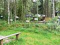 Szymbark - panoramio.jpg