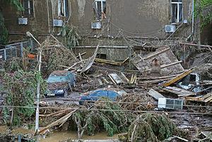 2015 Tbilisi flood - Tbilisi Zoo after the flood