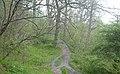 Teesdale Way - geograph.org.uk - 7067.jpg