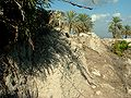 Tell Megiddo Preservation 2009 032.JPG