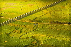 Gaur, Nepal - Aerial view of Terai plains near Gaur, Nepal
