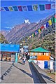 The Alpine Hotels on the way to MBC n ABC . Well managed trekking route in Nepal.jpg
