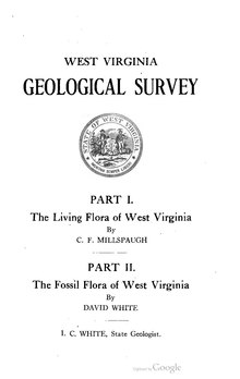 The Living Flora of West Virginia and The Fossil Flora of West Virginia.pdf