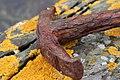 The old anchor - 1 (4916666975).jpg