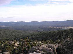 Tierra de Pinares desde Castroviejo. Soria Sapin..jpg