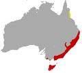 Tiger Quoll area.png