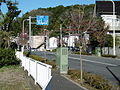 Tokyo Route 43 in Higashiyamato.JPG