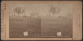 Tomb of Gen. Grant, Riverside Drive, N.Y, from Robert N. Dennis collection of stereoscopic views.png
