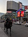 Toronto Police Horse unit - 20190709.jpg