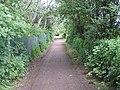 "Track To "" Penny Bridge "" - geograph.org.uk - 1348056.jpg"